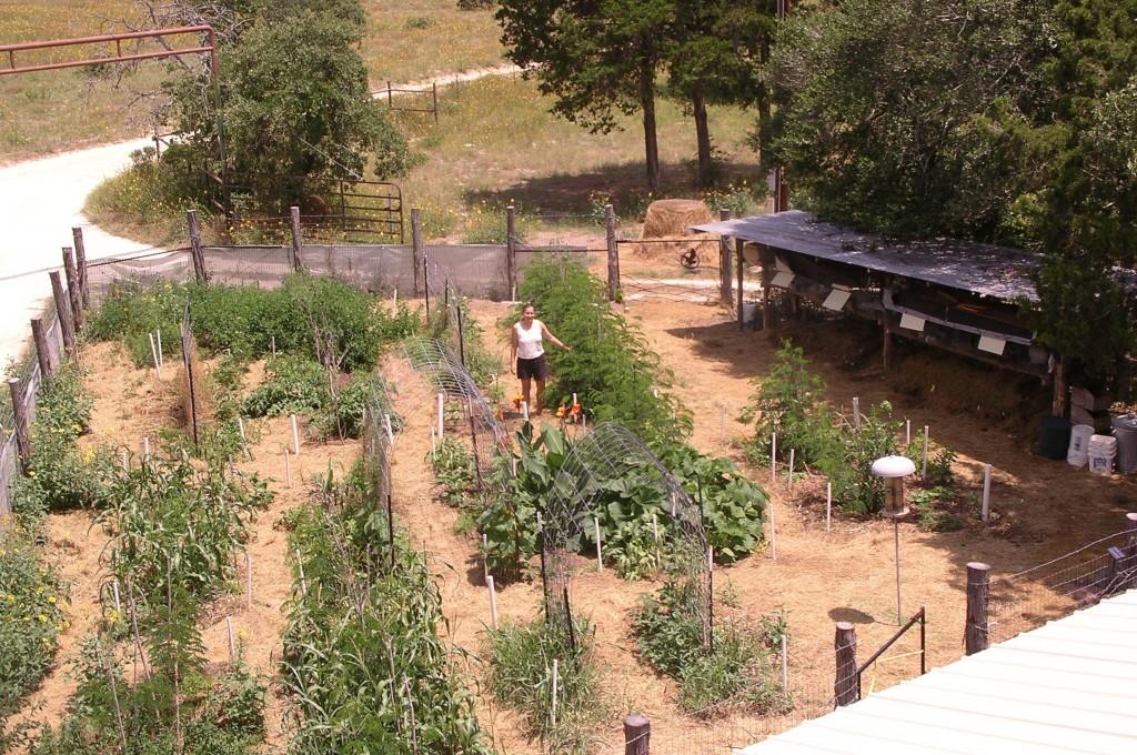 Marjory's garden